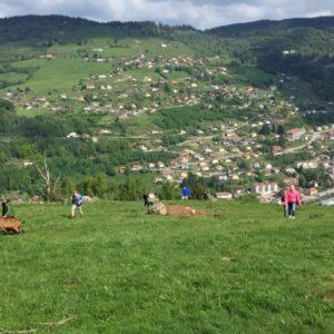 3e jour dans les Vosges