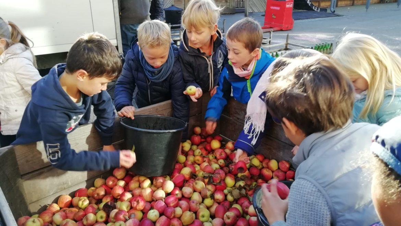 Journée de la pomme 2019