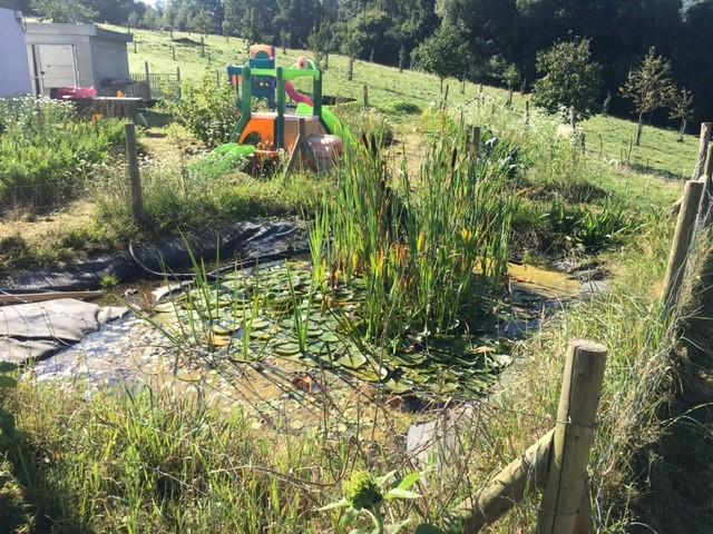 La zone verte de Montfort : potager, mare, verger